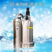 垂直式電動開關控制自動不銹鋼潛水泵