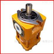 NBZ3-G32F低澡液壓油泵供應