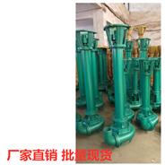 NL型立式泥浆泵 铸造款液下杂质提升泵