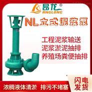 单级单吸泥浆泵 NL型杂质污水泥浆水泵